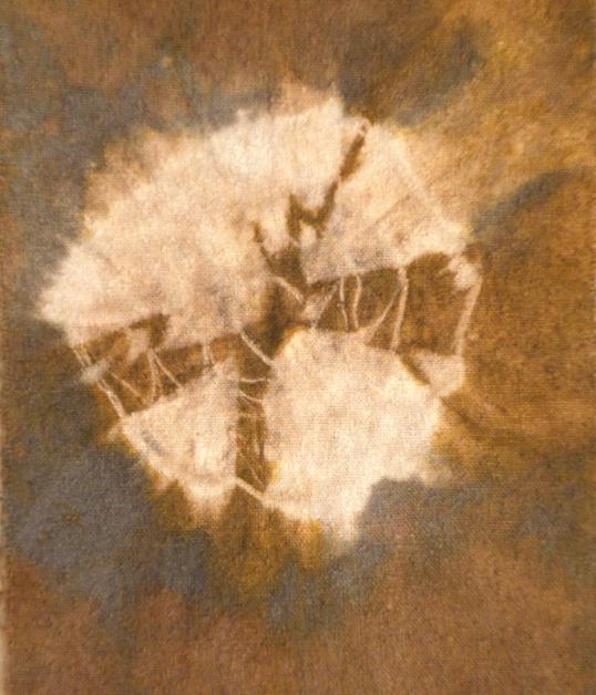 Rust shibori1